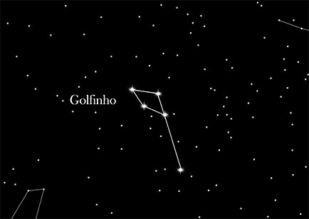 Constellation Dolphin