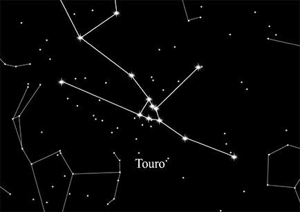 Constellation Bull